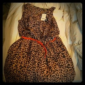 Melonie T. Belted Leopard Print Dress